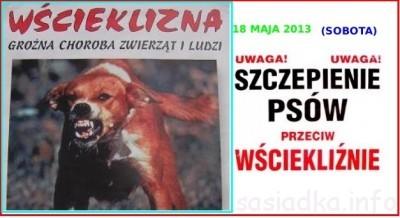 Komunikat szczepienie psów i kotów