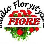 sf_fiore_ml