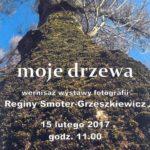 Otwarcie wystawy Moje drzewa Reginy Smoter-Grzeszkiewicz